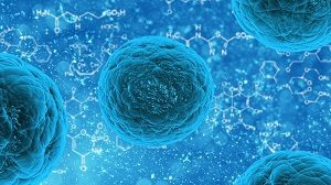 stem-cells-and-hair-loss