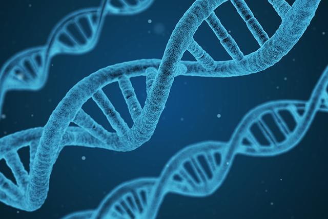 genetic hair loss in women